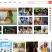 韩剧TV网 _热播韩剧网_最新最全最快最方便的韩剧影视网站