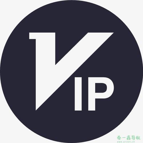 VIP视频解析站